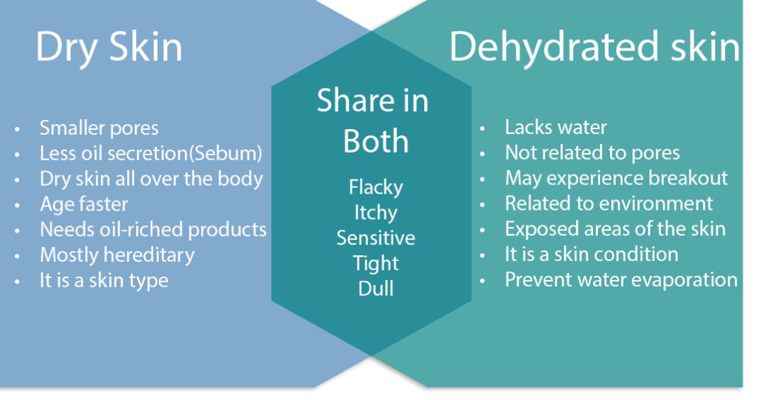 Did you know beauty dry and dehydrated skin graph
